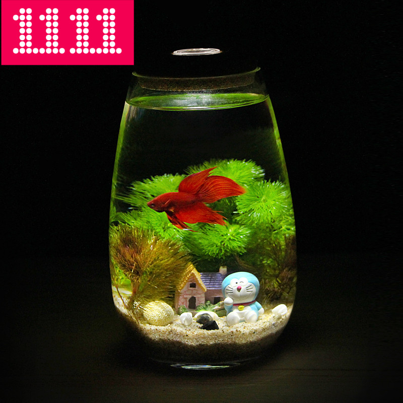 Creative desktop office mini small ecological aquarium for Desktop fish tank