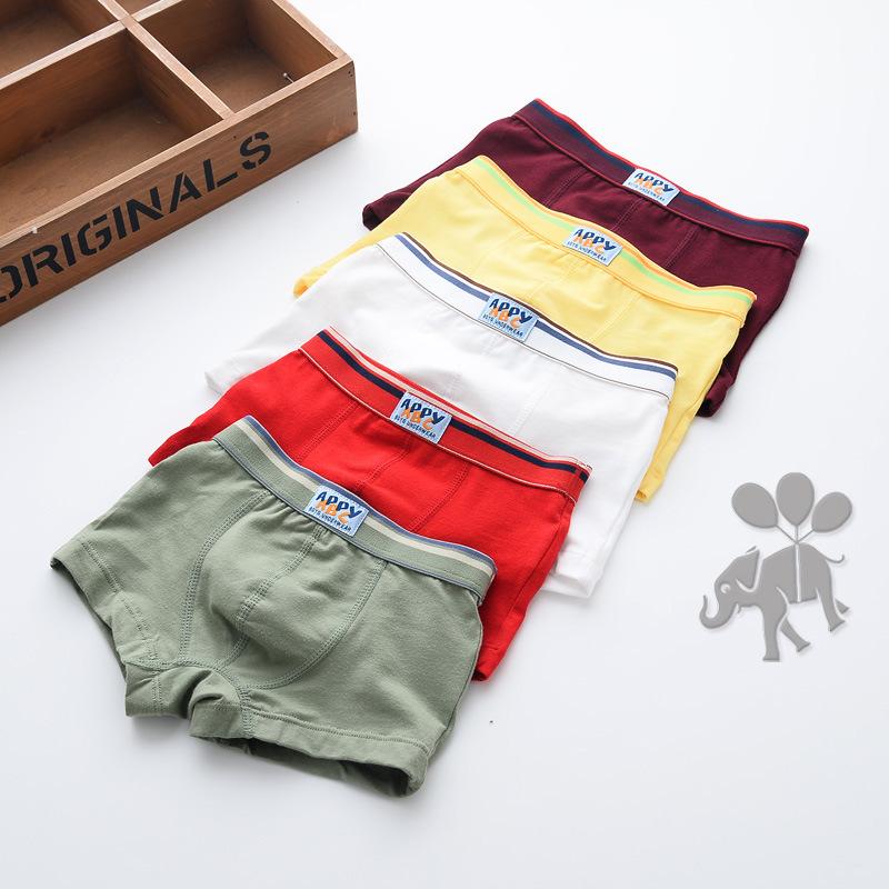 3 Pcs Cotton Big Boys Boxers Solid Children Underwear Toddler Underpants Teenager Boxers Baby Briefs Boy Panties YL151