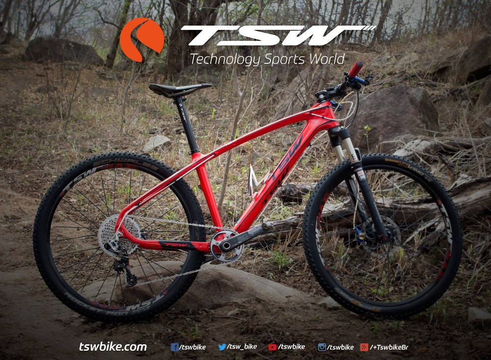 100% Genuine,Perfect!brazil Tsw 29er Bicycle Carbon Fiber Frame 29er ...