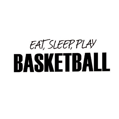 WSFS Hot Sale Wall Decal Sticker Quote Vinyl Eat Sleep Play Basketball Boy's(China (Mainland))
