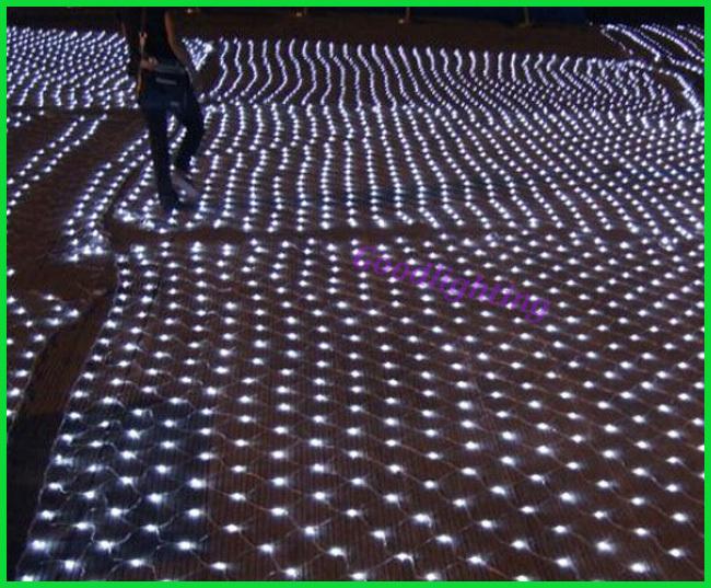 6Mx4M led net lights White/Blue/RGBY led indoor decoration light AC220V or AC110V with EU plug garden decoration(China (Mainland))