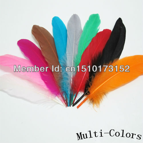 20s Mix Colors dyed Loose Hard Rod Goose Feathers lots craft sale DP-9 - TiTi Feather Market store
