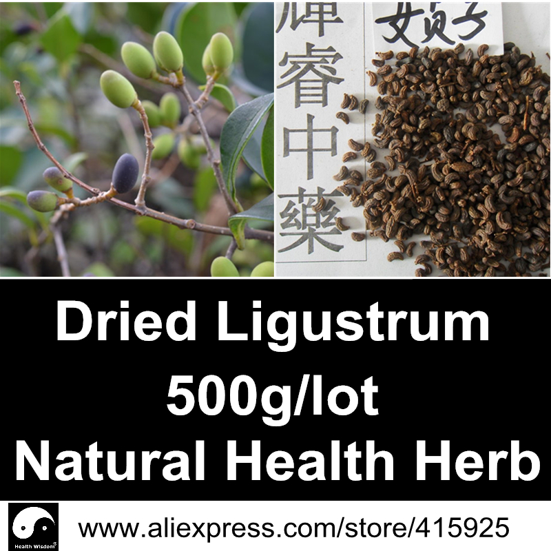Dried Ligustrum Lucidum 500g Natural Health Care Herbal Oleanolic Acid Chinese Glossy Privet Fruit<br><br>Aliexpress