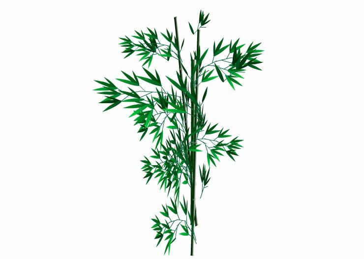 100% Natural  Bamboo Extract 70% Organic Silica Ultra Vitamin for Skin Hair and Nail Growth