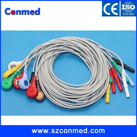 High quality DIN 10 Leads Holter ECG Cable AHA Snap/clip Leadwires,CE and ISO13485 Proved Manufacturer(China (Mainland))
