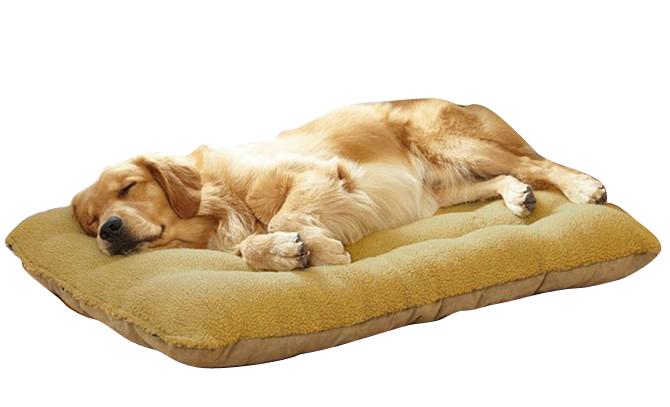 luxe grand chien lits promotion achetez des luxe grand chien lits promotionnels sur aliexpress. Black Bedroom Furniture Sets. Home Design Ideas