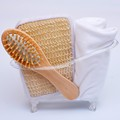 New style 4 Items set Pet Bathtub storage box Bath luffah brush sponge Wood Massage Comb