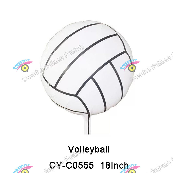 volleyball party supplies promotion