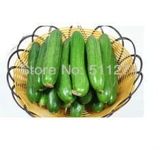 Vegetable seeds can be planted on the balcony,Mini cucumber.20pcs /lot Free shipping(China (Mainland))