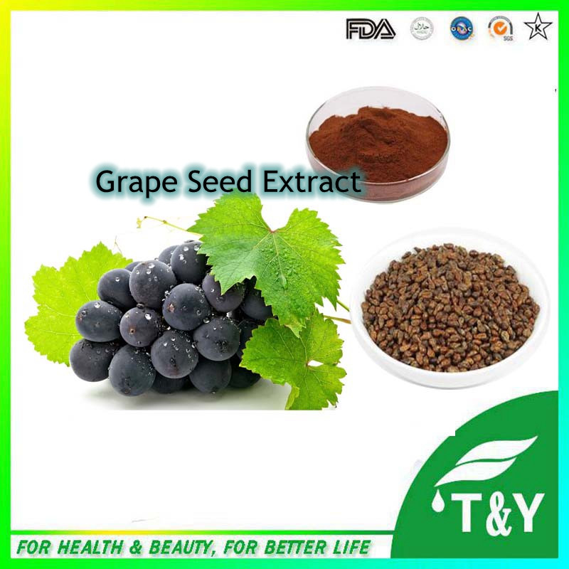 Natural water soluble grape seed extract(high orac value).organic grape seed extract 500g/Bag(China (Mainland))