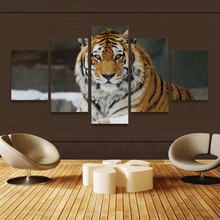 Buy Free 5P Framed Wall Art Painting Canvas Printings Living Room Decorate HD Poster Picture Tiger Art Wall Modern for $14.90 in AliExpress store