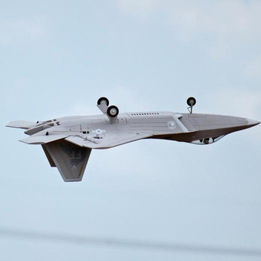 Freewing F-22 Electric RC Jet RTF without Battery(Hong Kong)