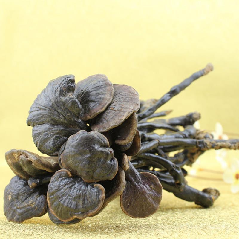 1000г сушеные дикие грибы Линчжи Рейши, Ганодерма Китайская Медицина травы 100% натуральный Анти-рак травяной чай 7021-30