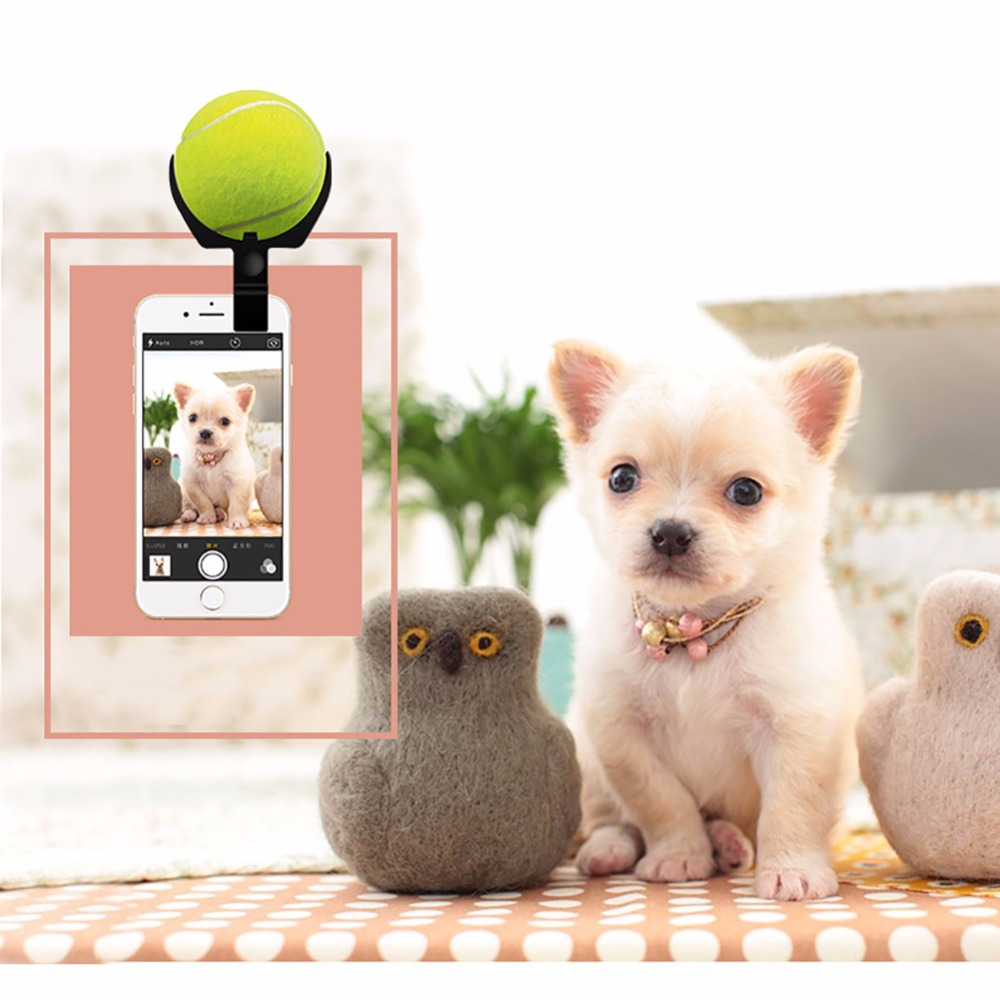 Pet Photo focus ball holder clip on the cellphone dog cat selfie helper eyes on the camera tennis ball holder on phone clip(China (Mainland))