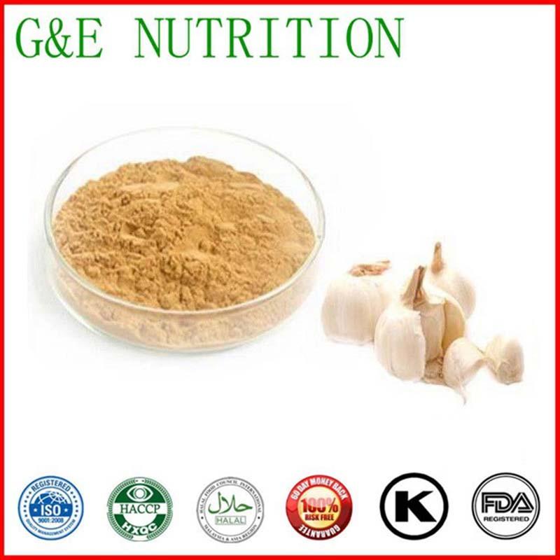 Wholesale garlic extract,garlic extract powder,garlic powder  10:1   1000g