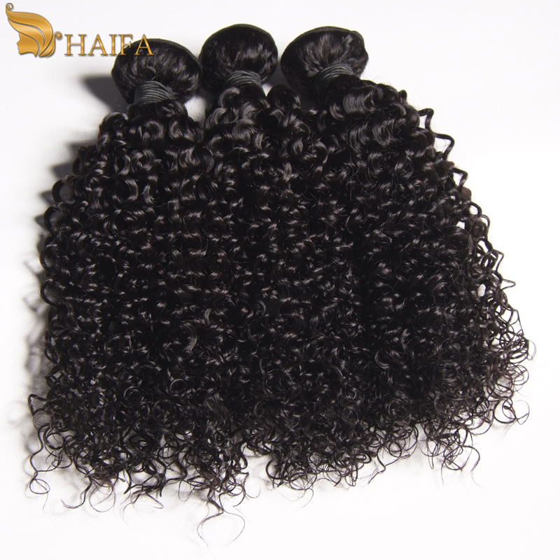 brazilian kinky curly hair tissages bresilien cheap remy hair 100 human braiding hair wet and wavy cheveux bresilien good price(China (Mainland))