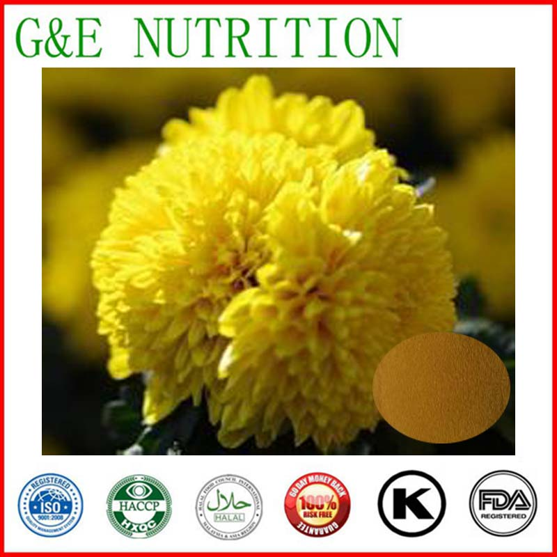 Chinese Traditional Herb Wild Chrysanthemum Extract ,Natural Chrysanthemum Extract powder Flavonoids  1000g