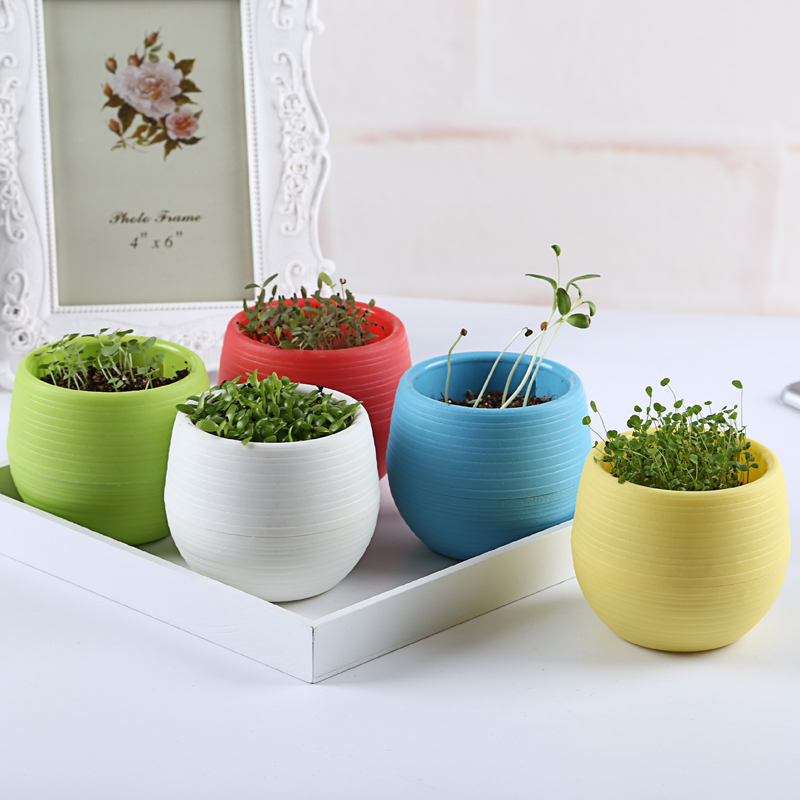 indoor flower pots keywords on decorative house plant pots for sale