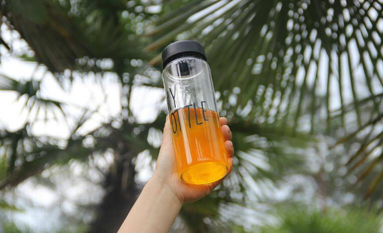 1PC Fational 500Ml Plastic Sport My Fruit Bottle Lemon Juice Readily Cup Drinking Water Free shipping(China (Mainland))