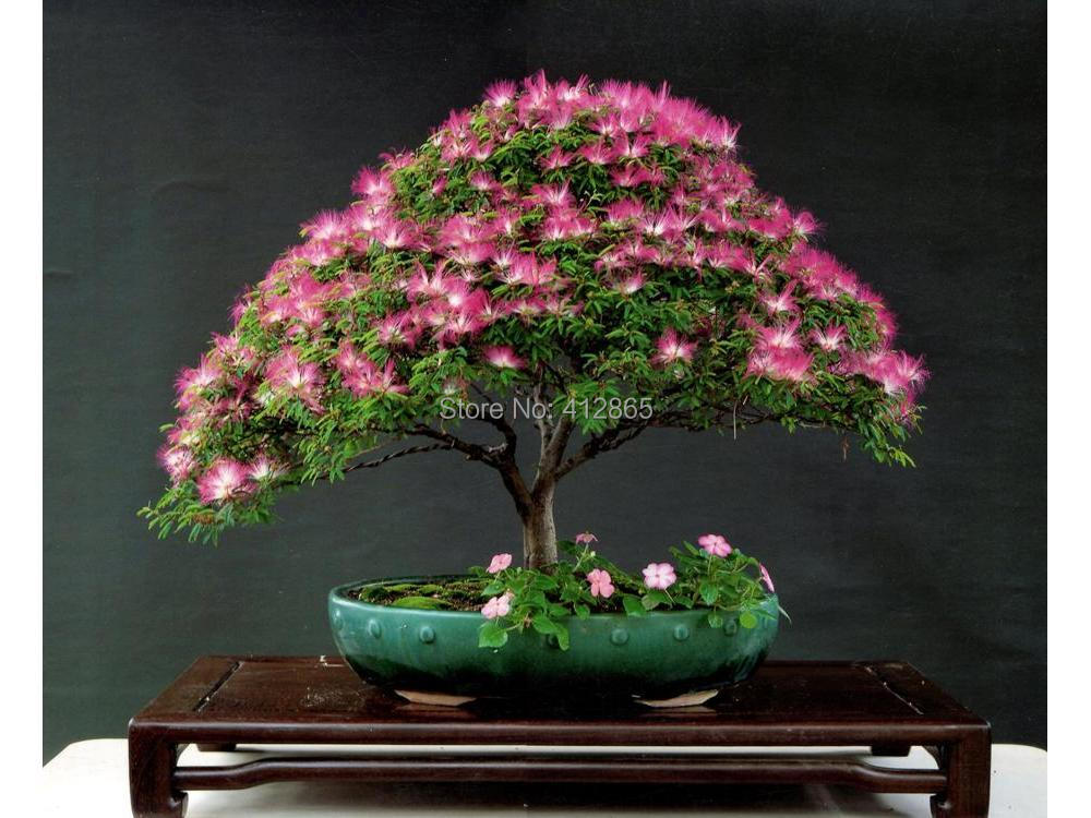 Silk Bonsai Trees Tree Mini Potted Bonsai