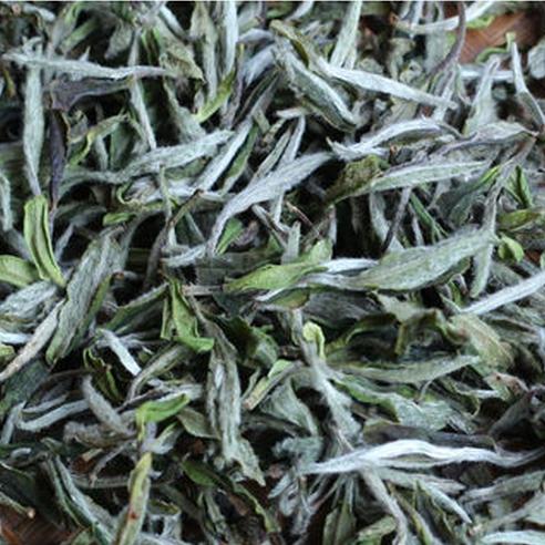 Fuding White Tea 2015 Wild Peony Powder Mountain Ecological Organic Pesticide Free Shipping S817(China (Mainland))