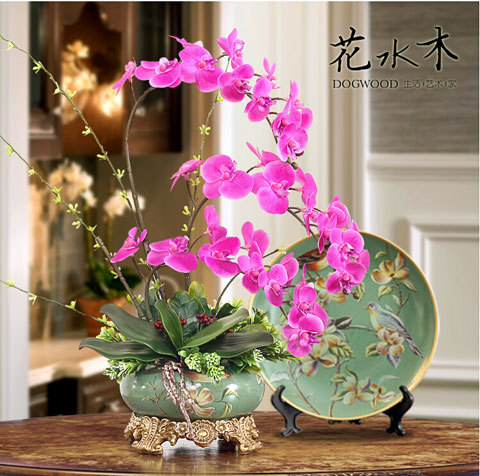 Phalaenopsis orchids Beautiful garden Bonsai balcony flower butterfly orchid seeds Home Plant Seeds 50 pcs seeds
