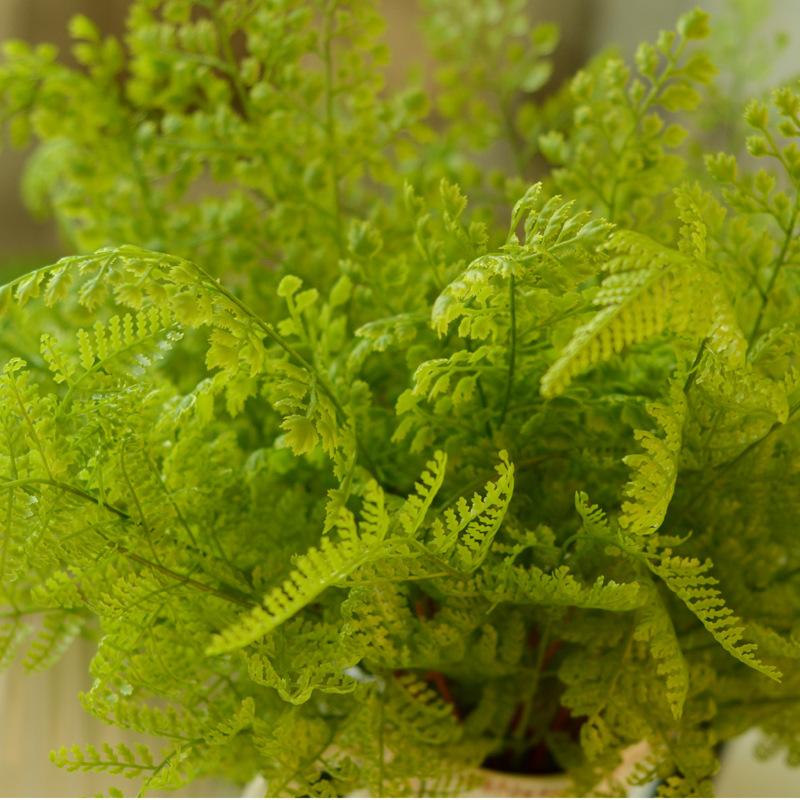 Simulation of high imitation plastic fake grass fern leaf snapdragon flower high simulation plants flower decoration grass-grade(China (Mainland))