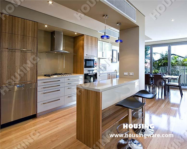 Modern style particleboard kitchen cabinet carcase and for Veneer for kitchen cabinets