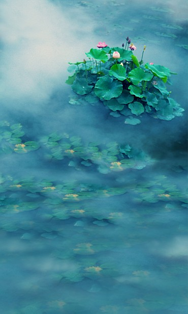 New arrival Background fundo Lotus flower floating in water 600CM*300CM width backgrounds LK 2527<br><br>Aliexpress