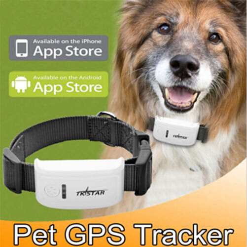 2015 best buy gps tracker cat tracker tk909 tristar gps tracker system for dogs ,personal ,kids ,free shipping ,no box(China (Mainland))