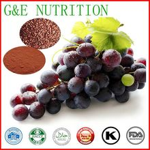 Food Grade Grape seed Extract Polyphenols Procyanidine 100G/LOT(China (Mainland))