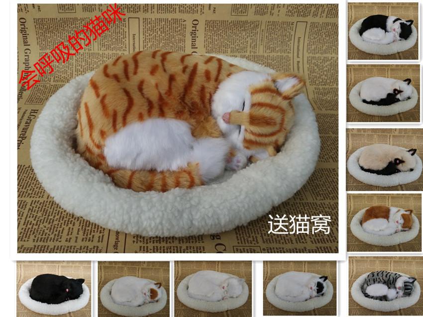 online kaufen gro handel echt katze spielzeug aus china echt katze spielzeug gro h ndler. Black Bedroom Furniture Sets. Home Design Ideas