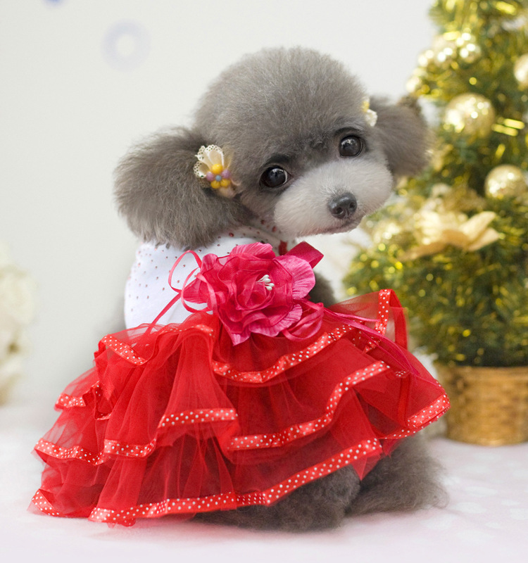 10pc/lot Pet clothes, spring, summer, rose, beautiful dog dress Gou .the dress is super cute .size:XS-5XL . L005(China (Mainland))