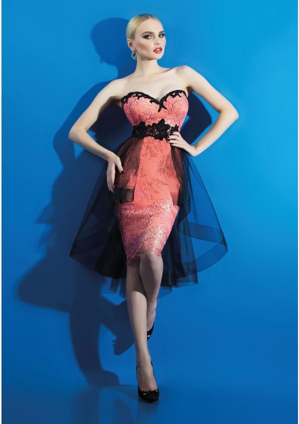 zy271 2015 rode sexy korte avondjurk nieuwe mode mouwloze appliques sweetheart backless kant prom dresses vestido de festa(China (Mainland))