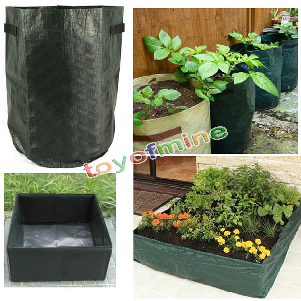 Pe vegetables grow planting bags garden balcony potatoes tomatoes planter pots in grow bags from - Veggies that grow on balcony ...