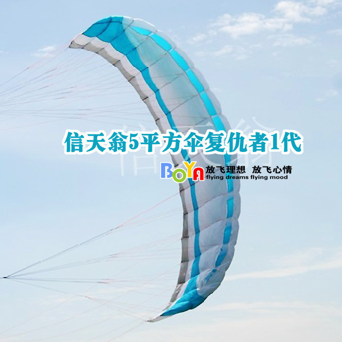 Outdoor sports professional stunt kite albatross software / 5 square umbrella Avengers / four-wire powered parachute kite BY308(China (Mainland))