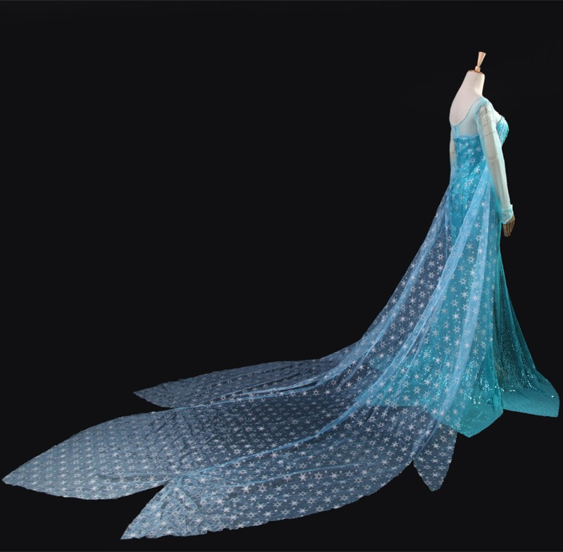 2014 Fashion Style Movie Frozen Snow Queen Elsa Costume Formal Dress Cosplay Clothes Free