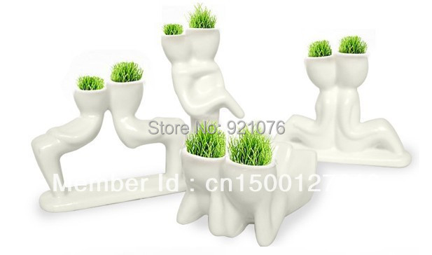 wholesale Creative Gift Plant Hair man X lover Plant Bonsai Grass Doll Office Mini Fantastic Home Decoration AA0005
