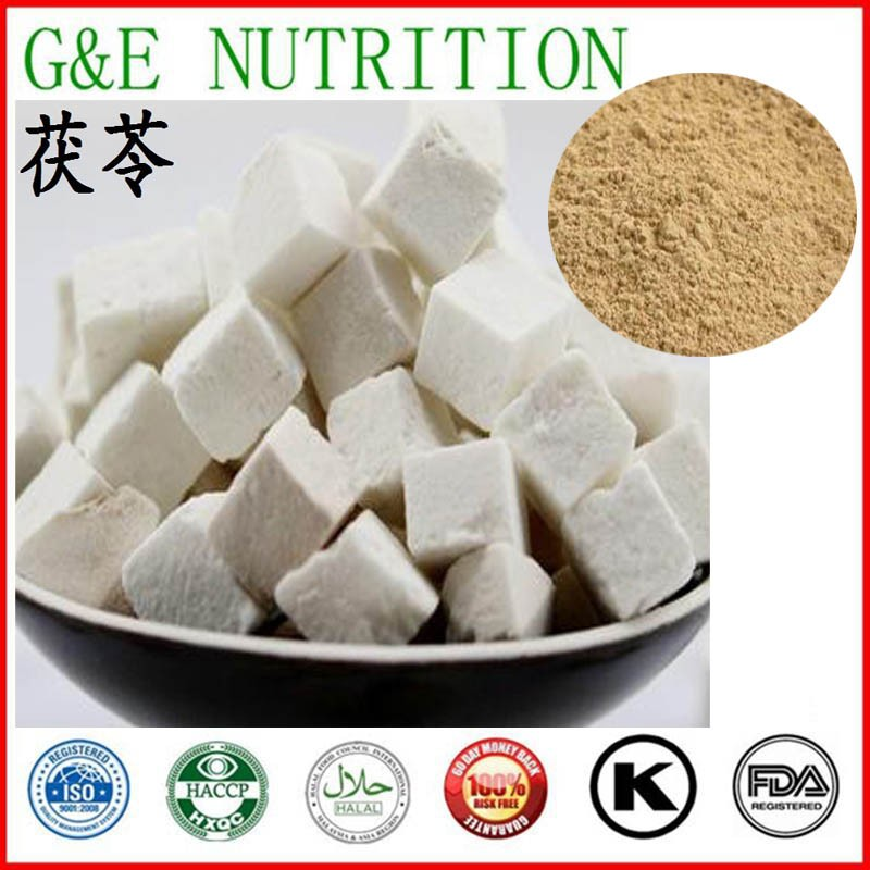 GMP manufacturer supply 100% natural Wolfiporia extensa P.E. Wolfiporia cocos Extract Wolfiporia 700g<br><br>Aliexpress