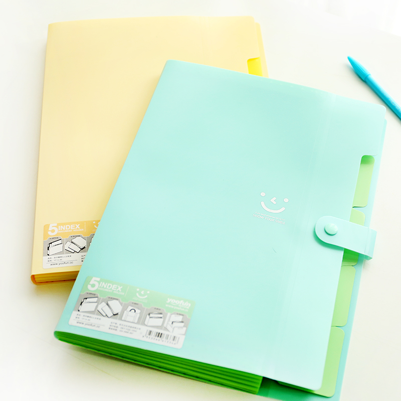 Creative stationery paper A4 envelope to PP folder data book The organ package office supplies(China (Mainland))