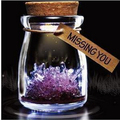 Hot Free Shipping Wishes Crystals Kit DIY Growing Magic Wishing Crystal Wish Glass Decoration Products Christmas