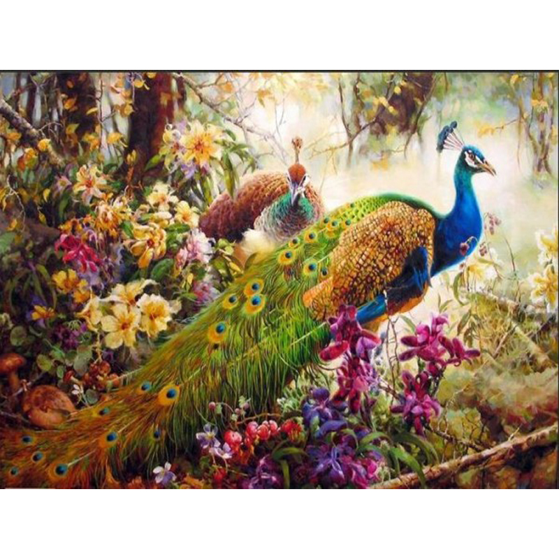 Frameless peacock DIY Painting By Numbers animal Acrylic Paint On Canvas family Hand-Painted Figure Paintings Wall Artwork(China (Mainland))