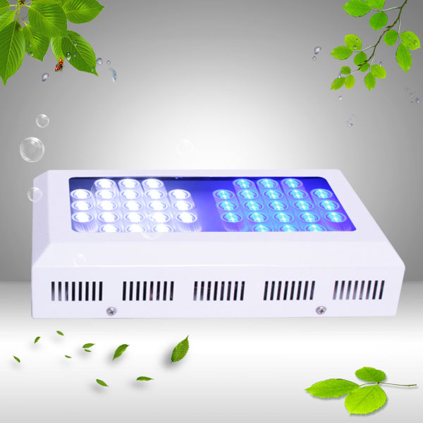 new Led aquarium light 126W with 42pcs 3W leds Royal blue leds 450nm good for coral reef salt water fishes water plants(China (Mainland))
