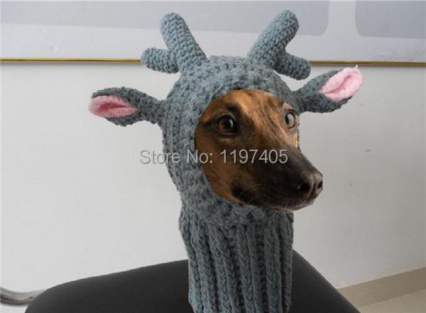 Free Crochet Patterns For Pet Hats Dancox For