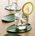 Art green leaf Cup mats pads tabletop coasters glass cup pads kitchen tools artificial green leaf
