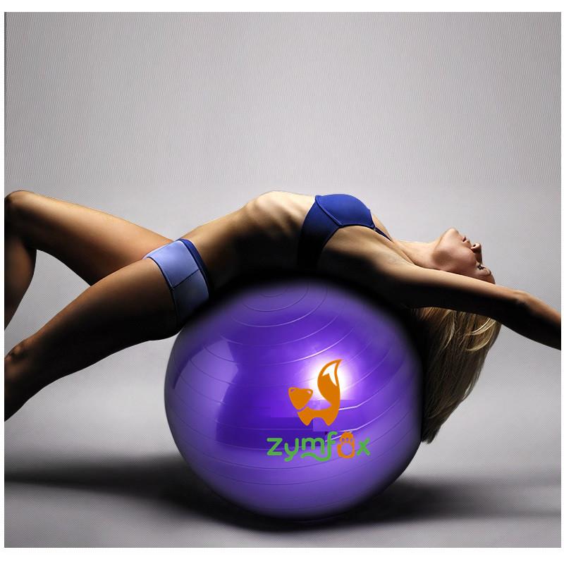 Ballon de fitness l 39 inflation promotion achetez des ballon for Housse ballon yoga