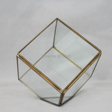 Indoor decoration air plants cube shape black or brass frame Geometric Glass Terrarium Tabletop Vase Home Garden Decor 10*10*10(China (Mainland))