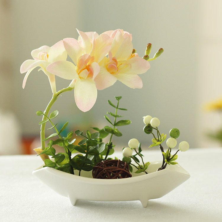 Decorate the room, computer tables bonsai seeds -20pcs/bag orchid seeds(China (Mainland))