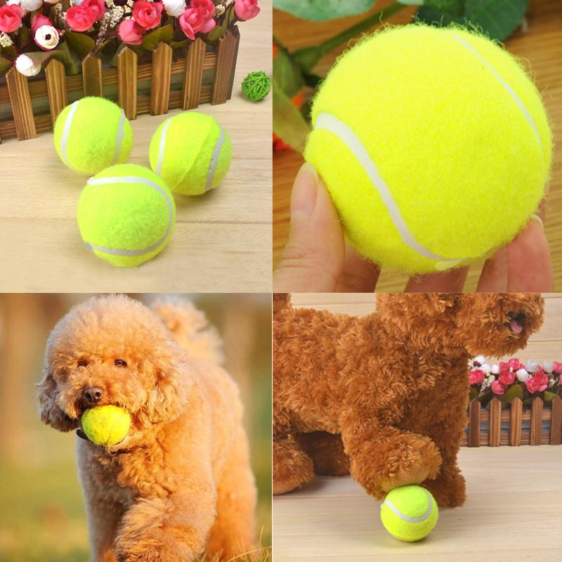 New Fetch Training Throw Squeaker Squeaky Tennis Ball Dog Puppy Cat Pets Toys Option Hot Good Quality(China (Mainland))