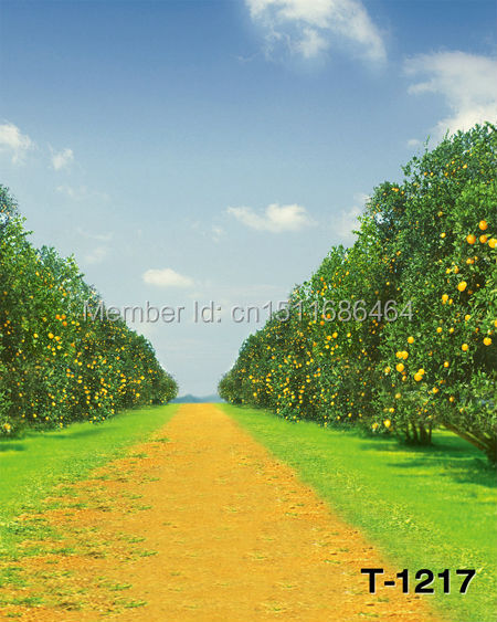 free shipping 5x7ft Photography Backdrops Photo Studio Computer Painted baby background Natural scenic country road T-1217(China (Mainland))